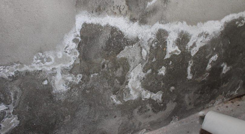 remontées capillaires en loire atlantique AR Peinture Pornichet